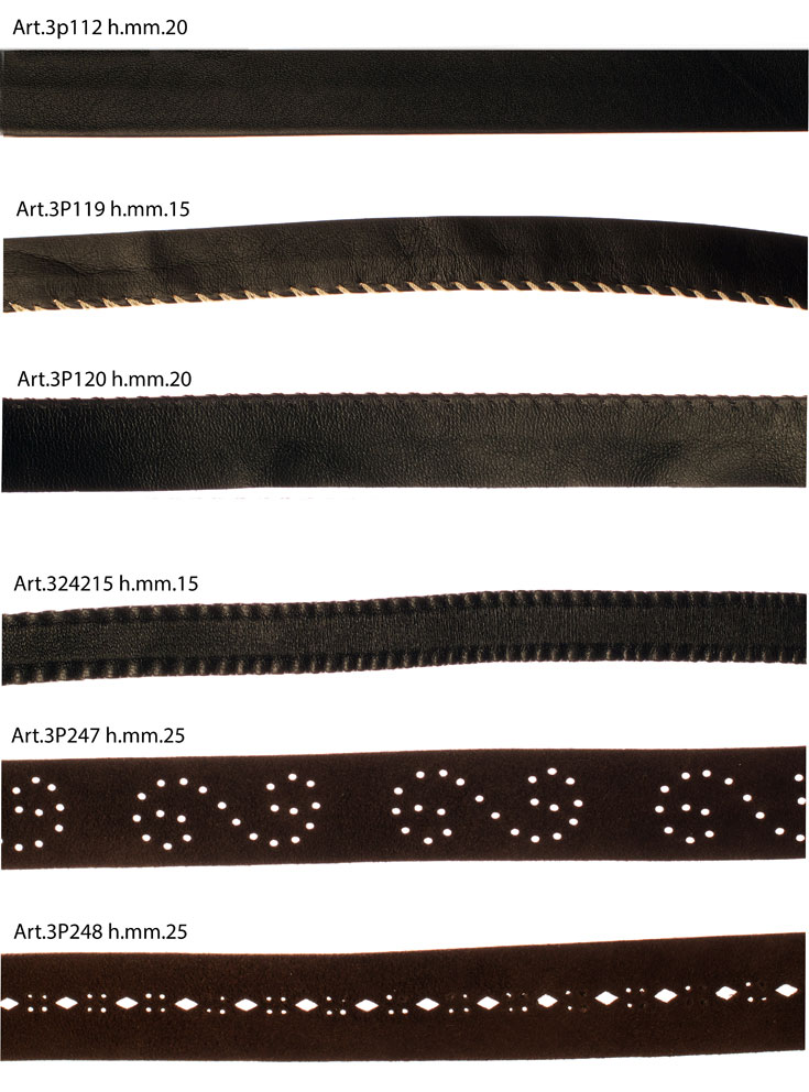 INSERTS AND PROFILES IN LEATHER Image